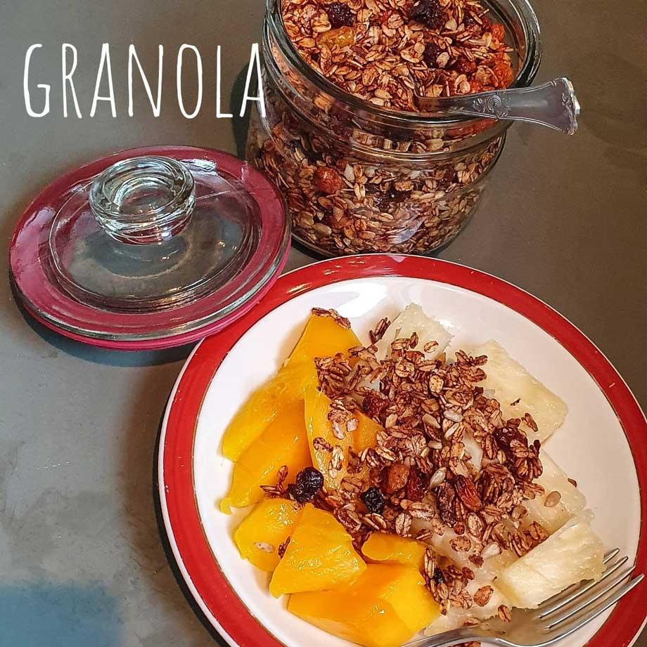 granola-01-capa